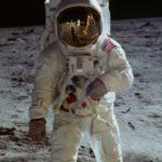 映画『アポロ11 完全版』 宇宙に行ったのは人間だけじゃない!アメーバからチンパンジーまで…宇宙を旅した動物たち