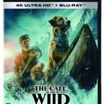『野性の呼び声』名犬バック役を演じたテリー・ノータリーのインタビュー映像解禁!監督やハリソン・フォードもテリーを絶賛