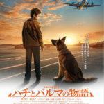 『ハチとパルマの物語』(5/28公開)ロシア国際映画祭出品決定