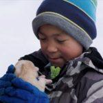 登場人物すべてを本人が演じる!グリーンランドの人口80人の村を舞台にした映画『北の果ての小さな村で』Blu-ray・DVD発売&デジタル配信決定!